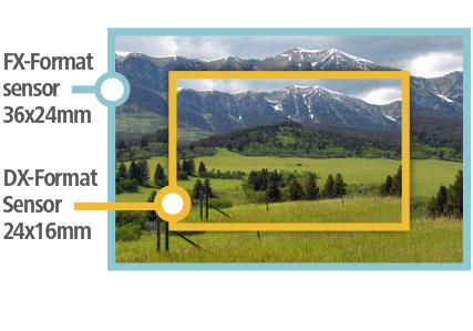 Wir wählen die richtige Technik für Sportfotografie: Wie wählt man das ideale Kameragehäuse?