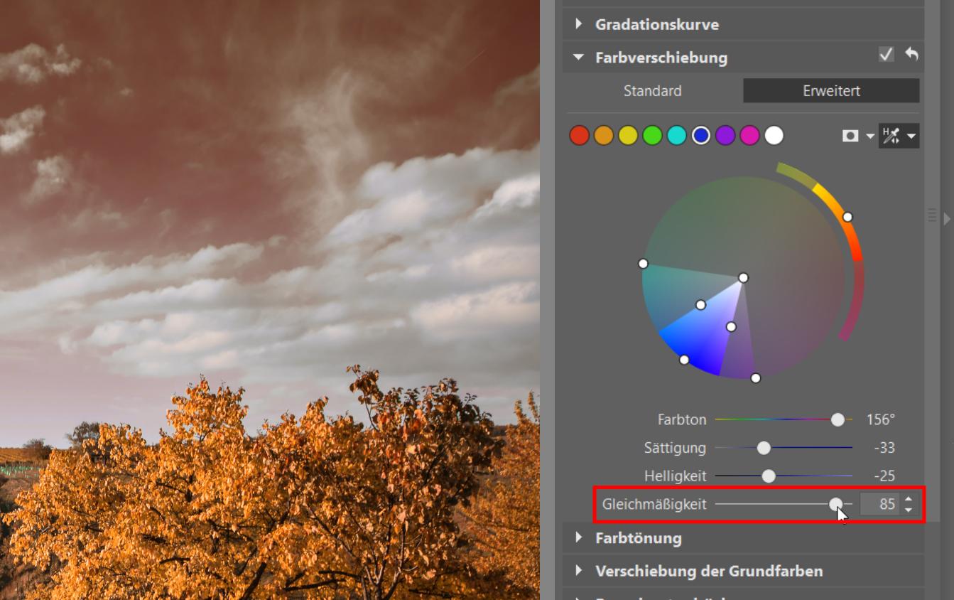 Farbkorrekturen: Gewinnen Sie die volle Kontrolle über die Farbgebung Ihrer Fotos