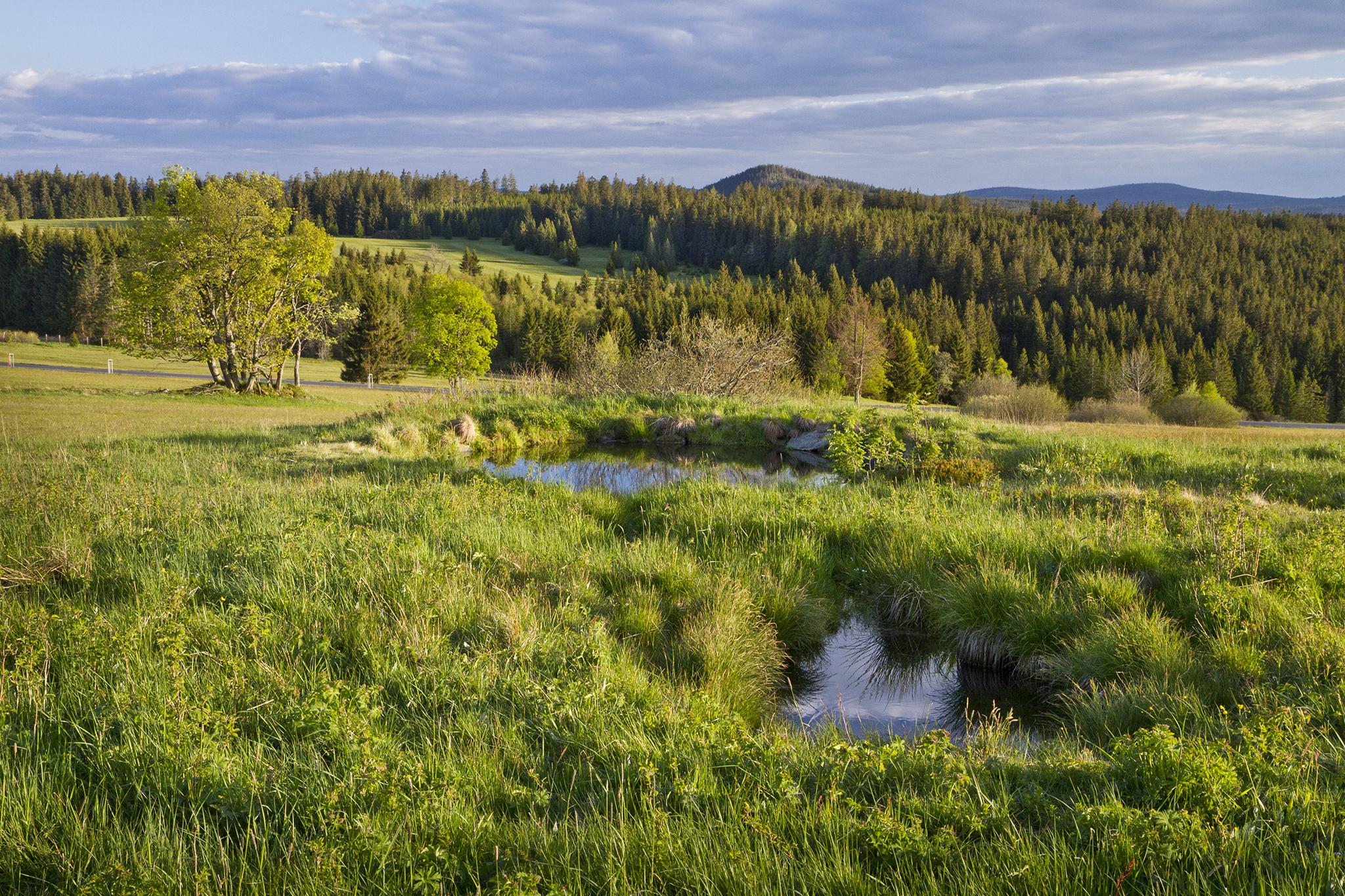 Der Hoffotograf des Böhmerwaldes Pavel Semerád: Das Rezept für ein gutes Landschaftsfoto? Morgensonne und fotogene Wolken