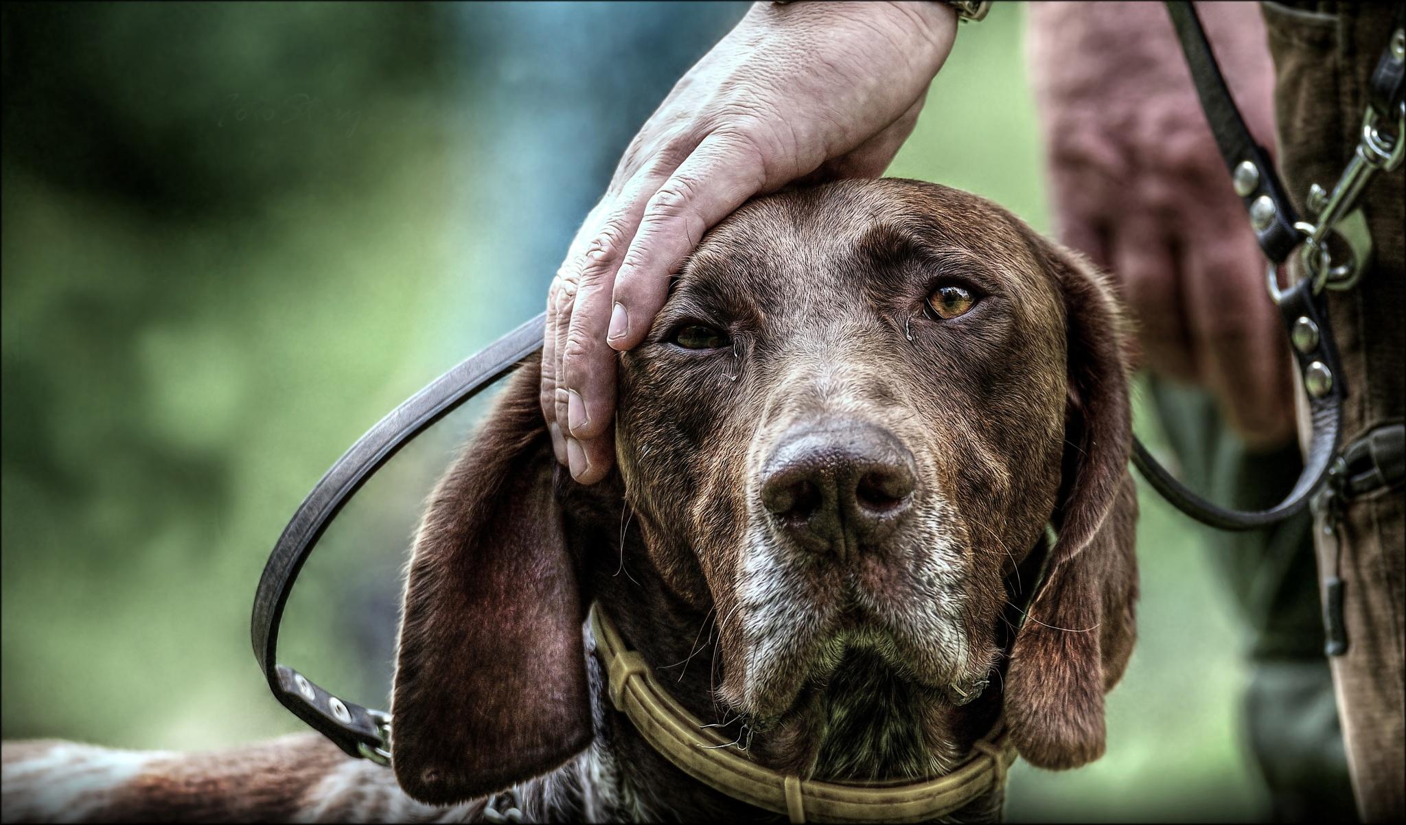 Jagdfotograf Adam Simandel: Wenn ich überlebe, werde ich etwas zu erzählen haben