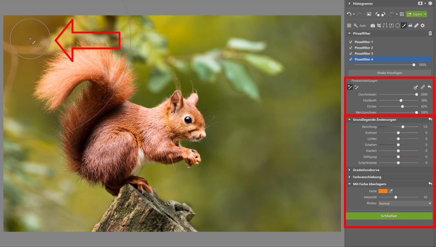 Pinselfilter: Behalten Sie die vollständige Kontrolle über jeden Bereich Ihres Fotos