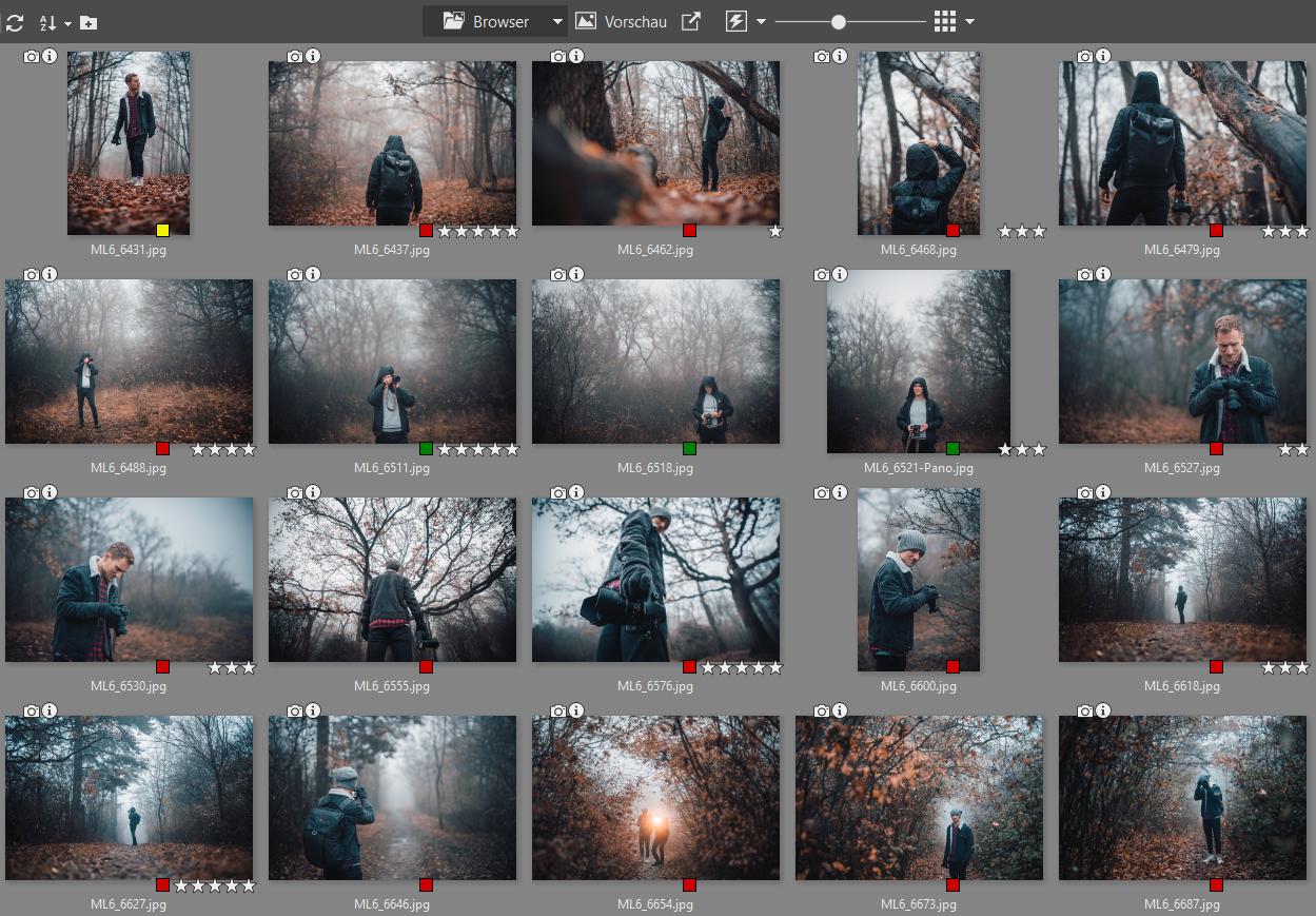 Fotoarchiv aufräumen: Sortieren Sie Fotos mithilfe von Markierungen und Bewertungen