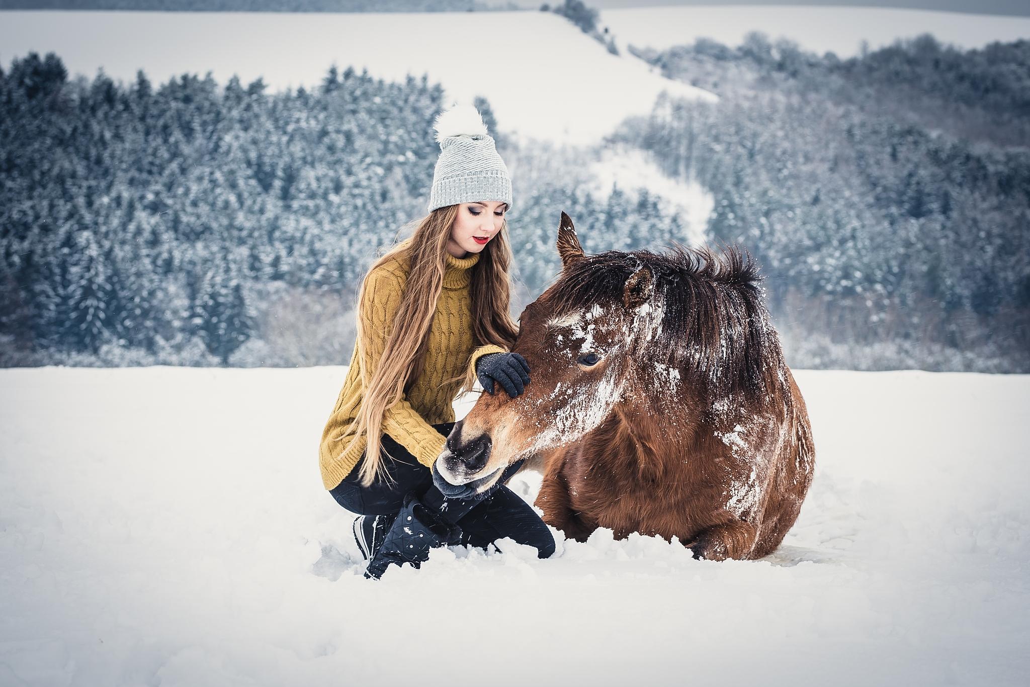 Wie macht man Porträts mit einem Pferd