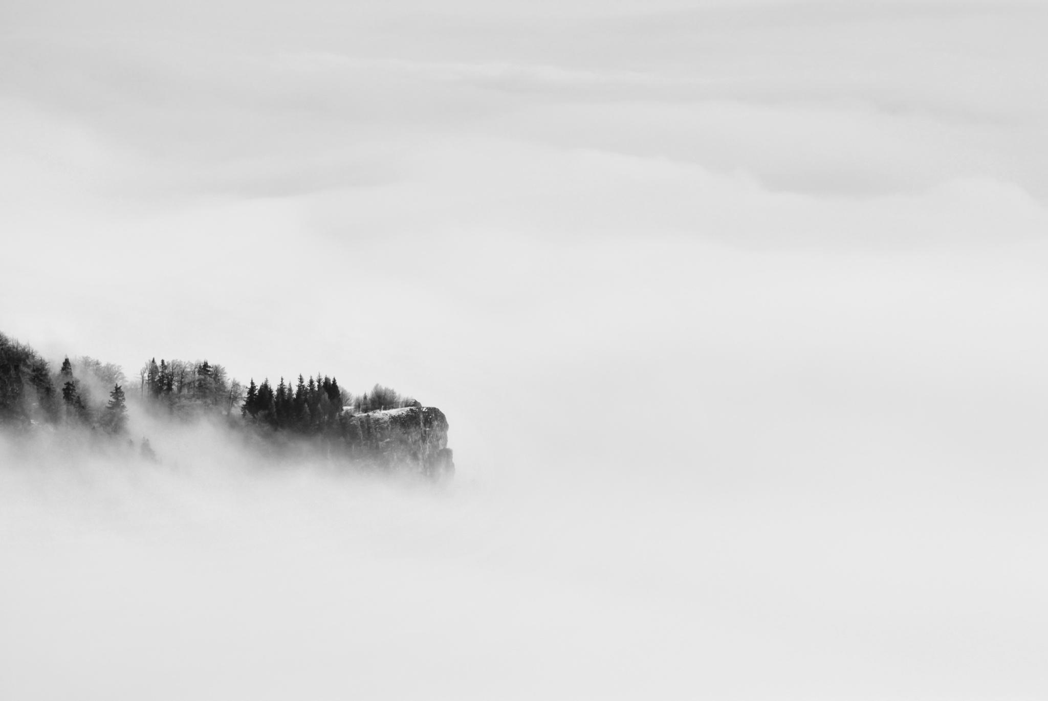 Erstellen Sie minimalistische Fotos und entdecken Sie die Schönheit im Einfachen